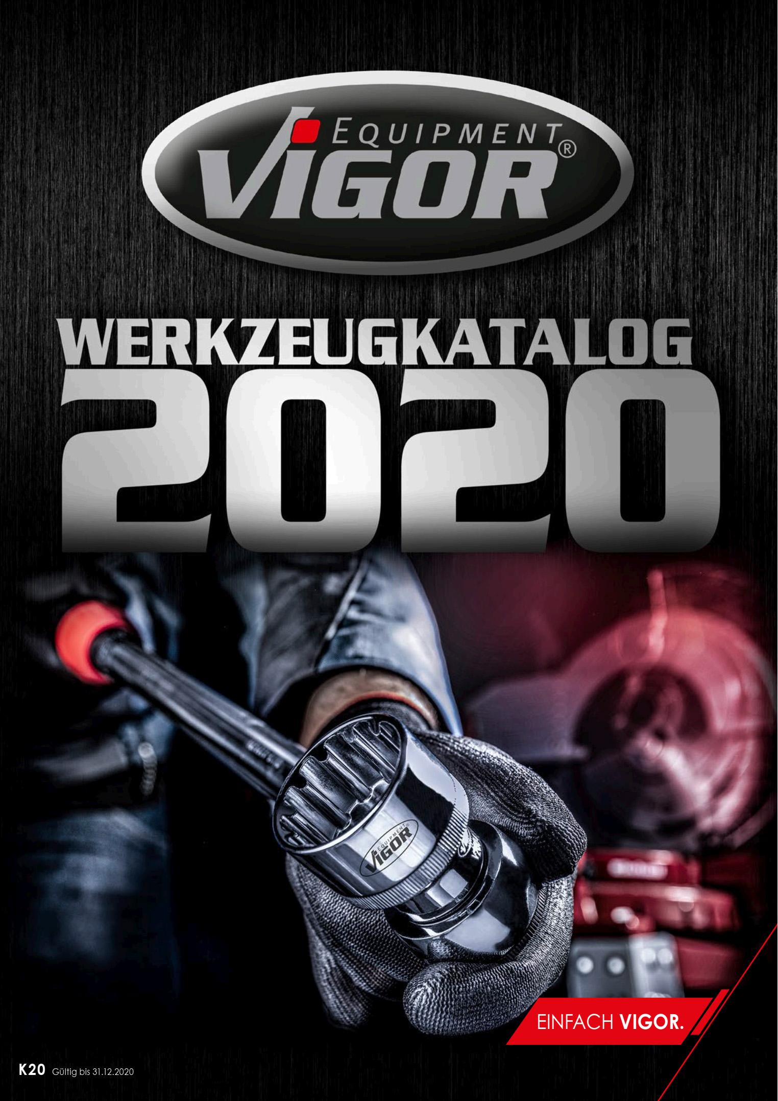 vi-2020.jpg
