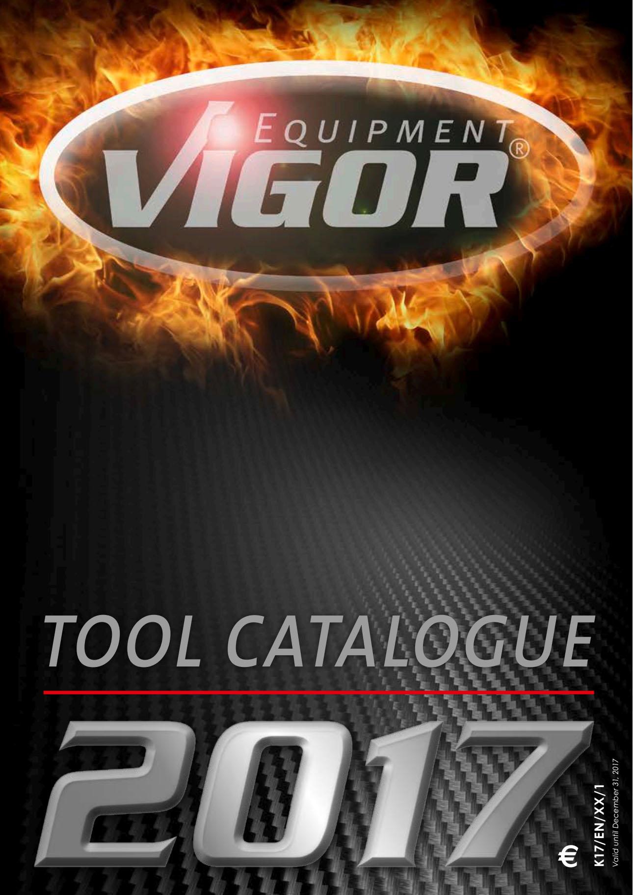 vigor_17.jpg